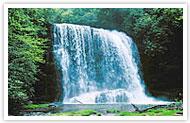 Sapphire Gorges State Park, North Carolina