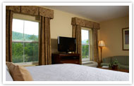 Hampton Inn & Suites Cashiers Hotel North Carolina King Studio