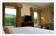 Hampton Inn & Suites Cashiers Hotel North Carolina King Studio